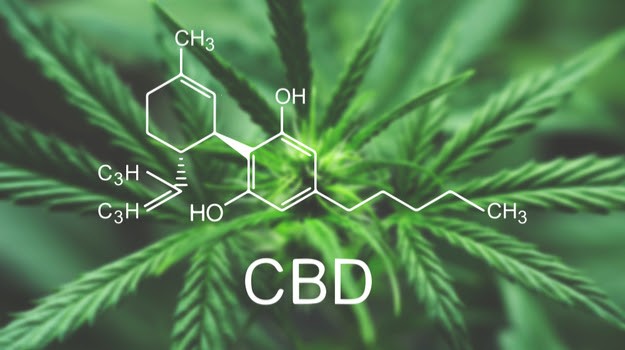 history-what-is-cbd